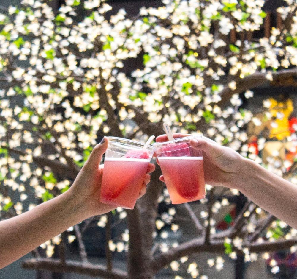 Cheers!-1